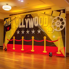 Large Themed Backdrops