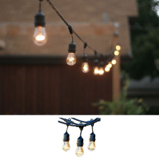 Festoon Lights - Vintage Style
