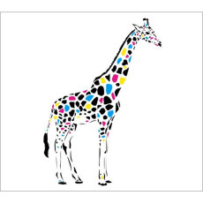 Standard Backdrop - Coloured Giraffe